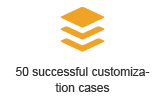 50 successful customization cases